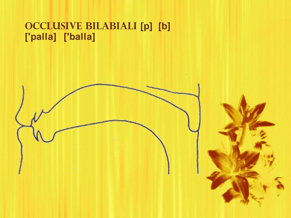 Occlusive bilabiali [p] [b] [ palla] [ balla]